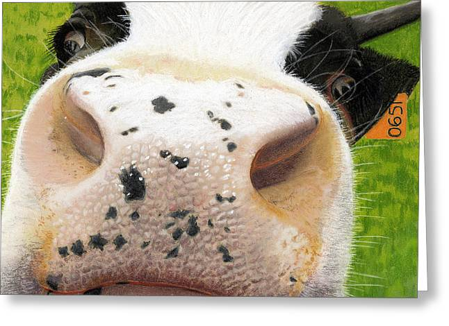 Farm Animals Pastels Greeting Cards - Cow No. 0651 Greeting Card by Carol McCarty