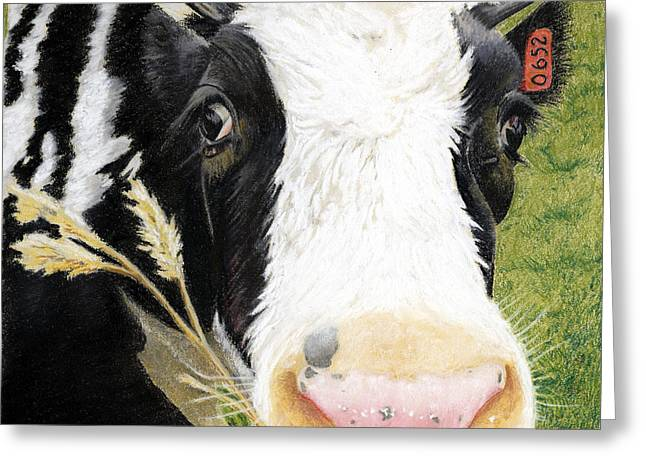 Farm Animals Pastels Greeting Cards - Cow No. 0652 Greeting Card by Carol McCarty