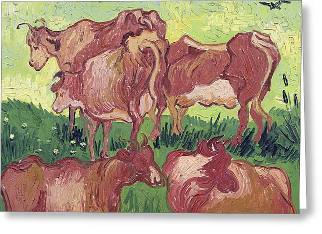 Crow Paintings Greeting Cards - Cows Greeting Card by Vincent Van Gogh
