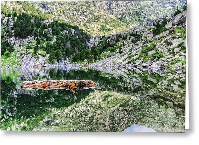 Crystall Greeting Cards - Crystall water Greeting Card by Tilyo Rusev