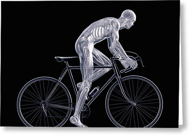 Physical Body Photographs Greeting Cards - Cycling Greeting Card by Science Picture Co