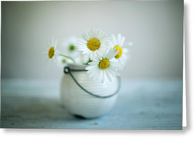 Daisy Flowers Greeting Card by Nailia Schwarz