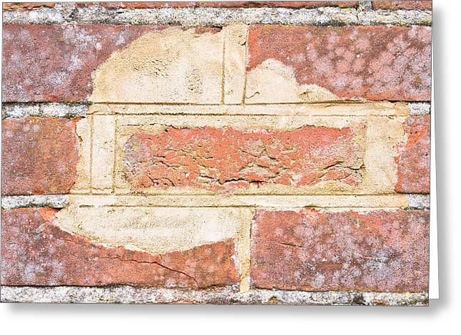 Solidity Greeting Cards - Damaged wall Greeting Card by Tom Gowanlock