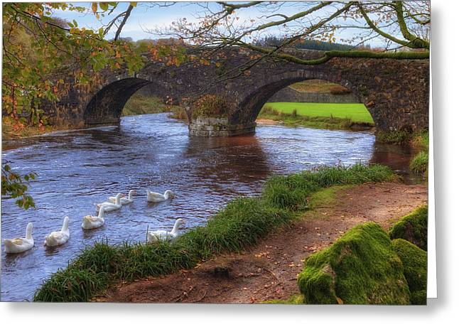 Moorlands Greeting Cards - Dartmoor - Two Bridges Greeting Card by Joana Kruse