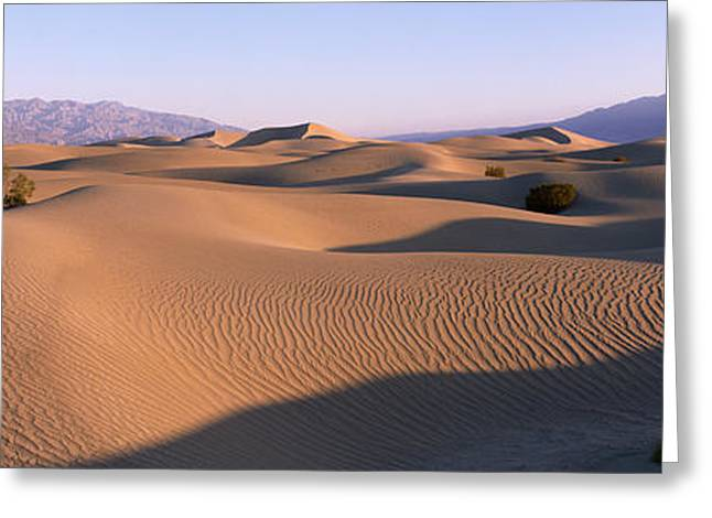Sand Pattern Greeting Cards - Death Valley National Park, California Greeting Card by Panoramic Images