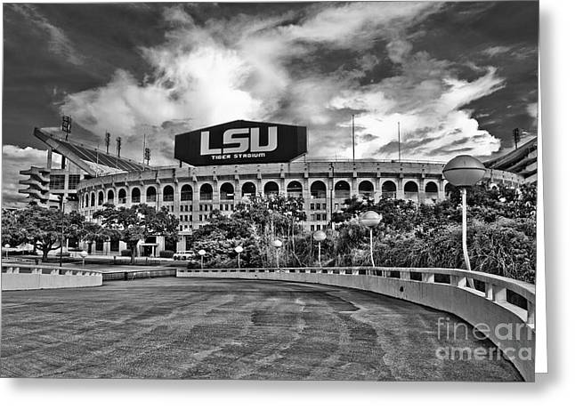 Lsu Greeting Cards - Death Valley Greeting Card by Scott Pellegrin