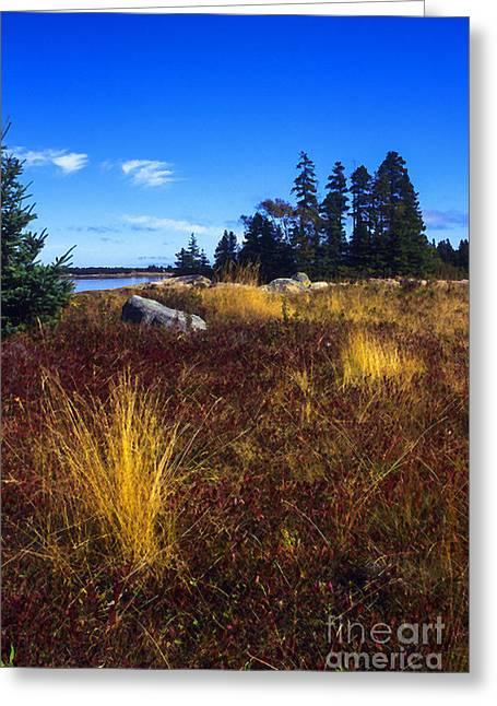 Deer Isle Maine Greeting Card by Thomas R Fletcher