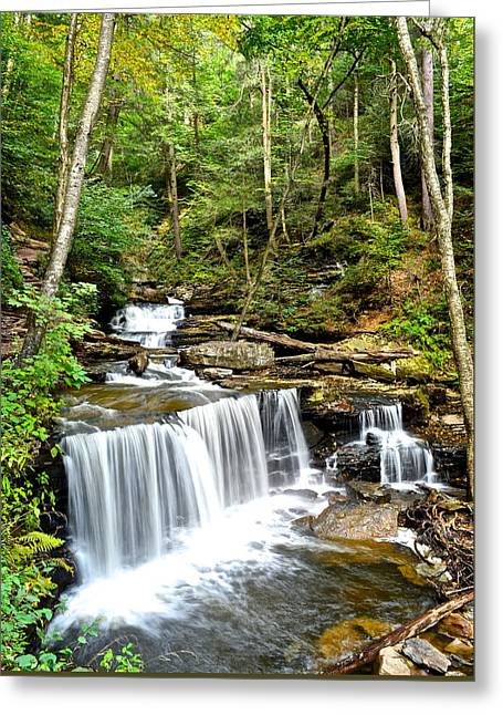 Paisaje Greeting Cards - Delaware Falls Greeting Card by Frozen in Time Fine Art Photography