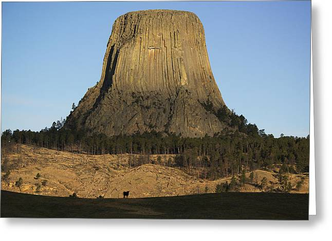 Devils Tower National Monument Wyoming Greeting Card by Kevin Schafer