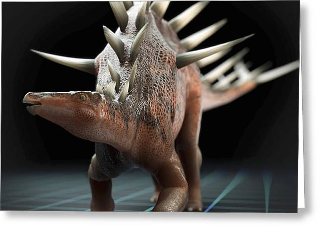 Extinction Greeting Cards - Dinosaur Kentrosaurus Greeting Card by Science Picture Co
