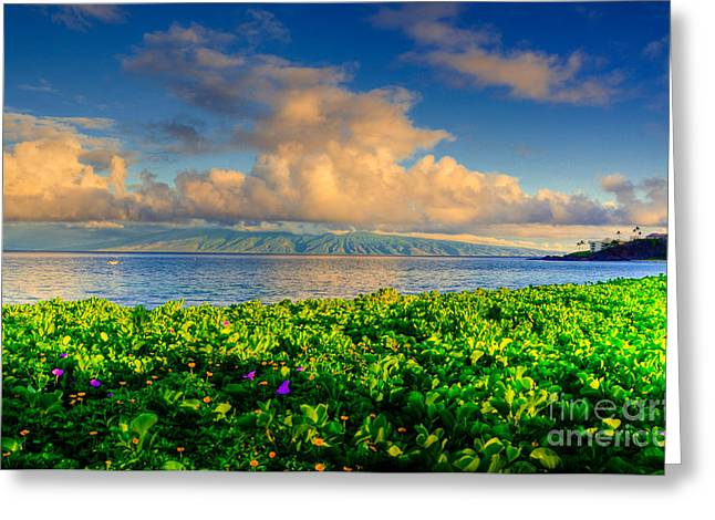 Molokai Greeting Cards - Distant Molokai Greeting Card by Kelly Wade