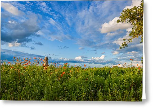 Ontario Landscape Print Greeting Cards - Ditch View  Greeting Card by Steve Harrington