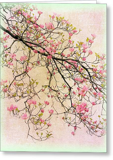Chic Digital Greeting Cards - Dogwood Canvas 2 Greeting Card by Jessica Jenney