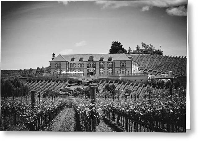 Analog Greeting Cards - Domaine Carneros Winery - Napa Valley Greeting Card by Mountain Dreams