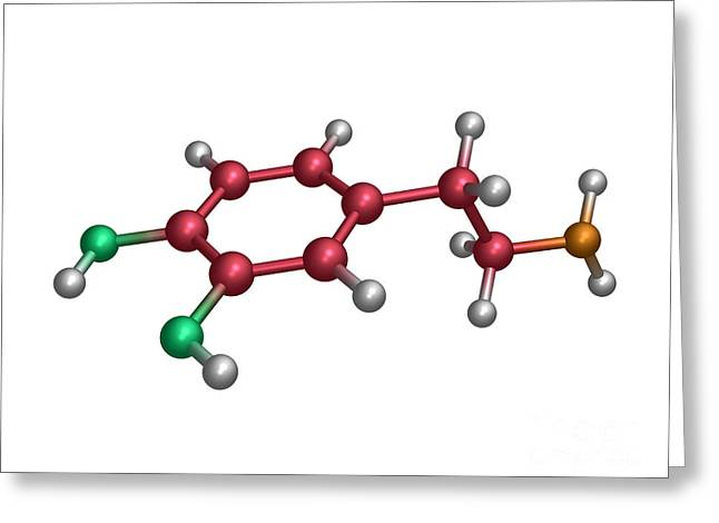 Dopamine Greeting Cards - Dopamine Molecule Greeting Card by Dr. Tim Evans