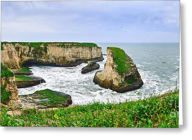 Panoramic Ocean Greeting Cards - Dramatic panoramic view of Shark Fin Cove Greeting Card by Jamie Pham