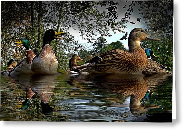 Ducklings Mixed Media Greeting Cards - Duck Talk Greeting Card by Charlie Nitro