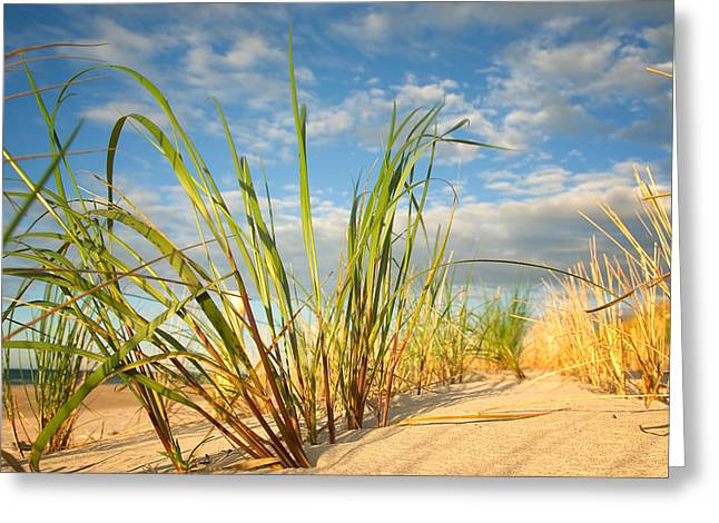 Deutschland Greeting Cards - Dunas Greeting Card by Steffen Gierok