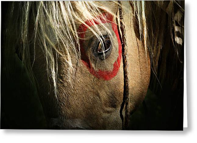 Wild Horses Greeting Cards - Eagle Eye Greeting Card by Lyndsey Warren