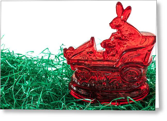 March Hare Photographs Greeting Cards - Easter Bunny Greeting Card by Frank Gaertner