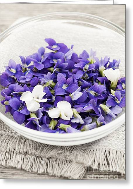 Foraging Greeting Cards - Edible violets in bowl Greeting Card by Elena Elisseeva