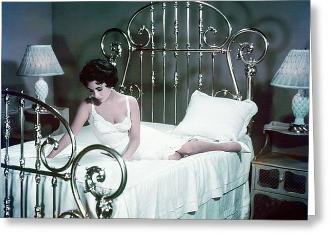 Tin Roof Greeting Cards - Elizabeth Taylor in Cat on a Hot Tin Roof  Greeting Card by Silver Screen