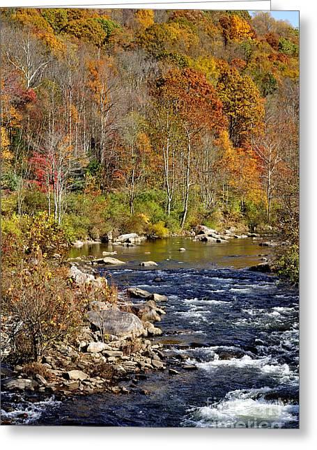 Nicholas Greeting Cards - Fall along Cherry River Greeting Card by Thomas R Fletcher
