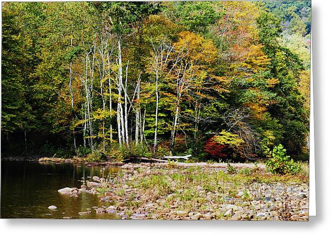 Fall Color River Greeting Card by Thomas R Fletcher
