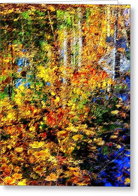 Shed Digital Art Greeting Cards - Fall Reflections Greeting Card by Tricia Marchlik