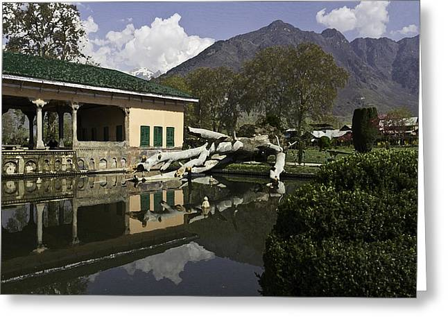 Greenery Greeting Cards - Fallen tree in water pool inside the Shalimar Garden in Srinagar Greeting Card by Ashish Agarwal