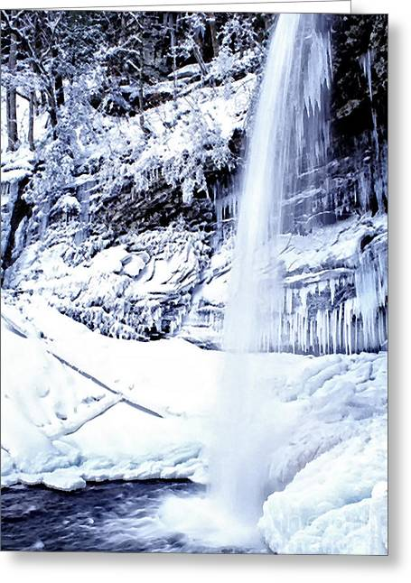 Monongahela National Forest Greeting Cards - Falls of Hills Creek Greeting Card by Thomas R Fletcher