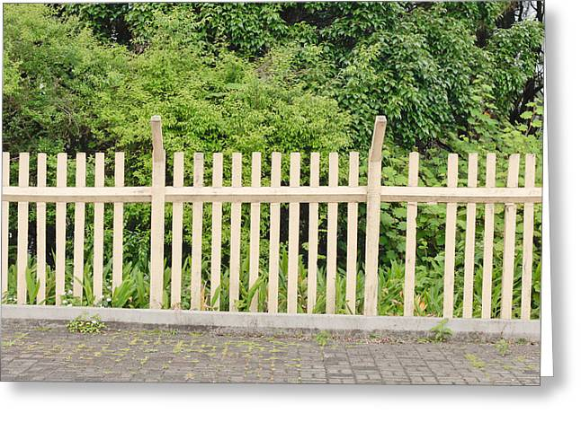 Fragment Greeting Cards - Fence Greeting Card by Tom Gowanlock