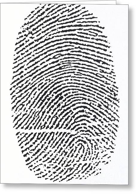 Identification Greeting Cards - Fingerprint Greeting Card by Dorling Kindersley