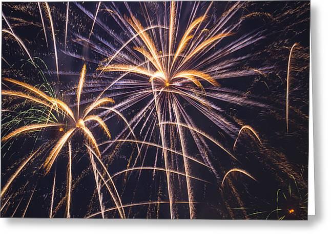 Fireworks Celebration  Greeting Card by Garry Gay