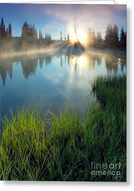 Fog Mist Greeting Cards - First Light Greeting Card by Mike  Dawson
