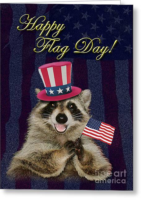 Wildlife Celebration Greeting Cards - Flag Day Raccoon Greeting Card by Jeanette K
