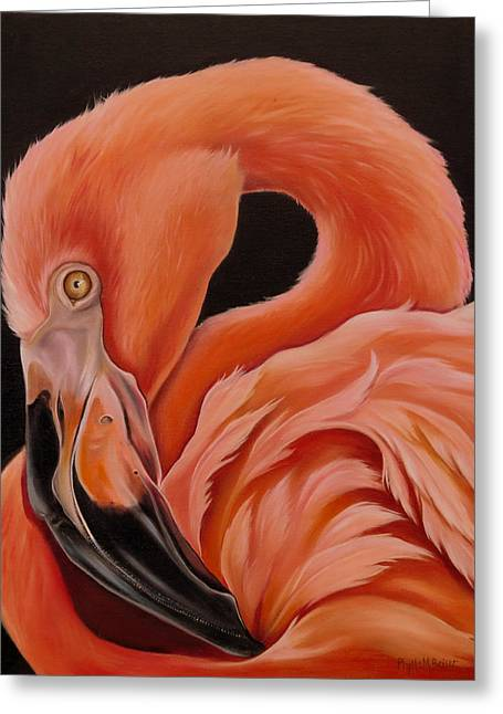 Wadingbird Greeting Cards - Flamingo Portrait Greeting Card by Phyllis Beiser