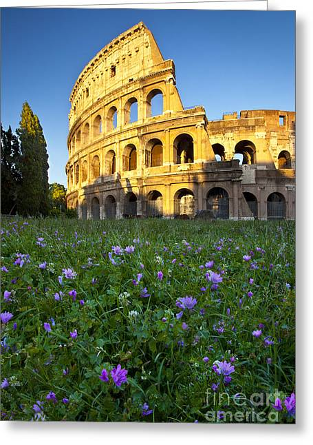 Italian Sunset Greeting Cards - Flowers at the Coliseum Greeting Card by Brian Jannsen