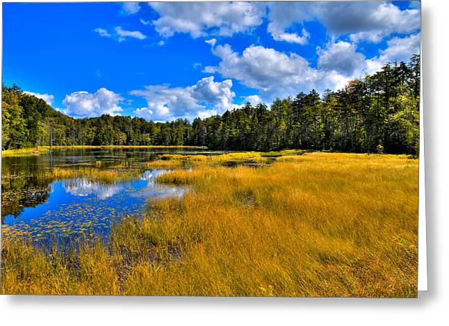 Fly Pond in the Adirondacks Greeting Card by David Patterson