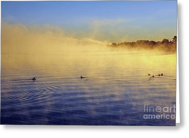 Lakes Greeting Cards - Fog at Dawn Greeting Card by Terri Gostola