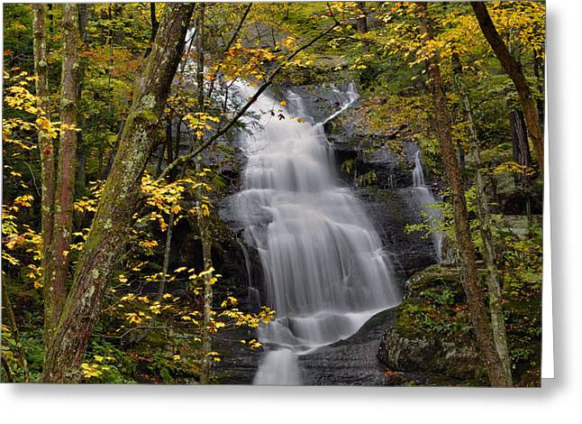Forest Waterfall In Autumn Greeting Card by Stephen  Vecchiotti