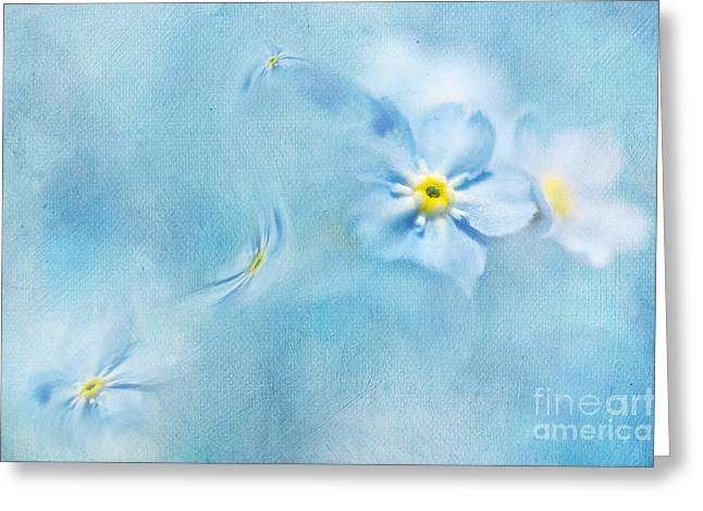 Forgotten Mixed Media Greeting Cards - Forget-me-not Greeting Card by Svetlana Sewell