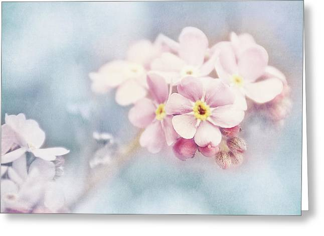 Forgotten Greeting Cards - Forget Me Not Greeting Card by Viaina