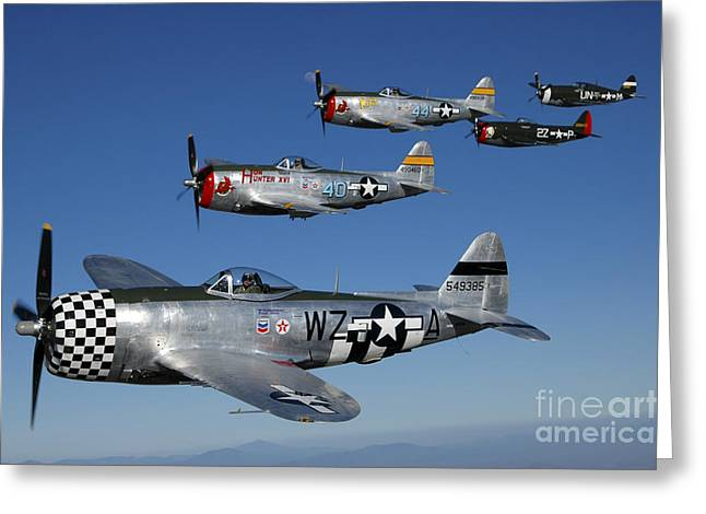 Cooperation Greeting Cards - Formation Of P-47 Thunderbolts Flying Greeting Card by Phil Wallick
