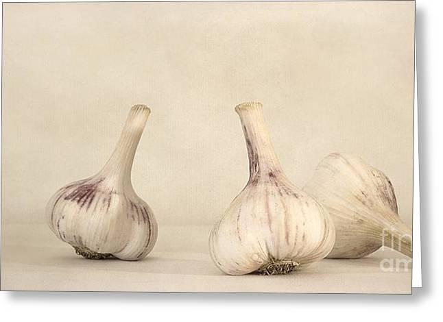 fresh garlic Greeting Card by Priska Wettstein