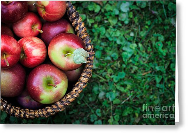 Picking Greeting Cards - Fresh picked apples Greeting Card by Edward Fielding
