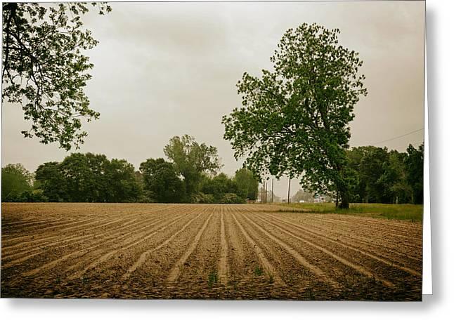 Alabama Greeting Cards - Freshly Plowed Spring Field - Alabama Greeting Card by Mountain Dreams