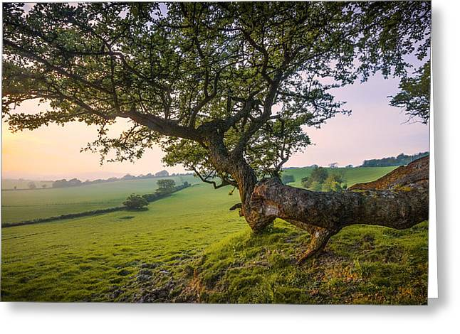 Kent Greeting Cards - Garden of England.  Greeting Card by Ian Hufton