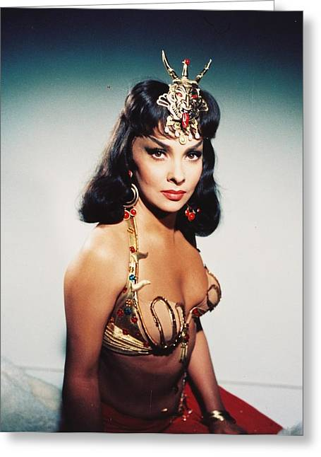 Solomon Greeting Cards - Gina Lollobrigida in Solomon and Sheba  Greeting Card by Silver Screen