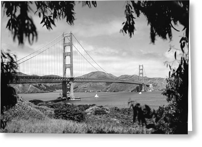 Netting Greeting Cards - Golden Gate Bridge Greeting Card by Underwood Archives